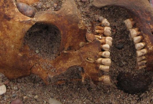 Salme leiukohta Saaremaal maeti umbes 750. aasta paiku neli venda, nende viies sugulane ning arvatavasti viisikuga samast Rootsi piirkonnast pärit mehed.